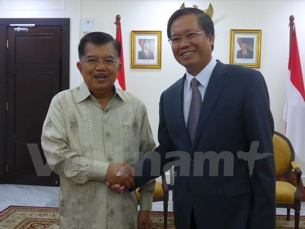 VN-Indonesia relationship contributes to ASEAN development: diplomat hinh anh 1
