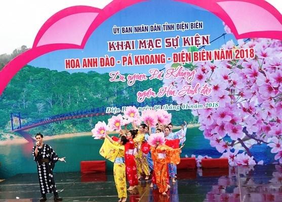 Dien Bien hosts first cherry blossom festival hinh anh 1