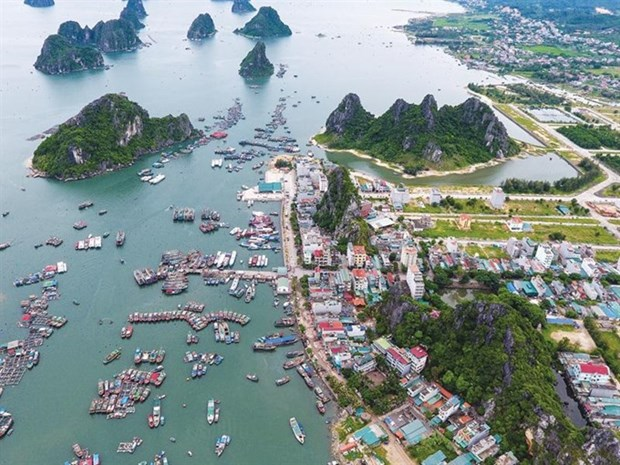 Experts discuss management models for economic zones hinh anh 1
