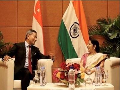 India, Singapore discuss trade partnership hinh anh 1