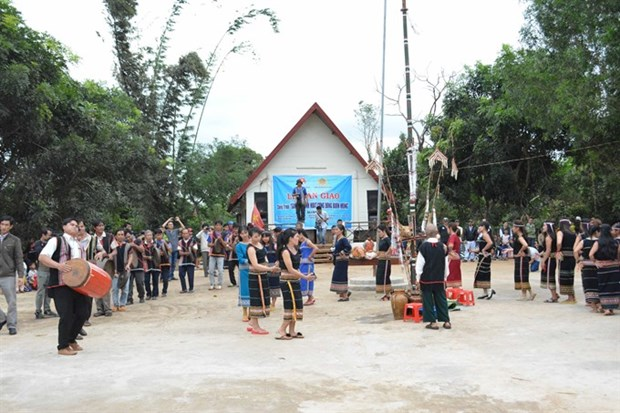 Sedang people celebrate New Rice Festival hinh anh 1