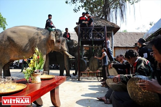 Dak Lak develops community-based tourism this year hinh anh 1