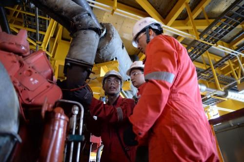 PetroVietnam eyes larger reserves in 2018 hinh anh 1