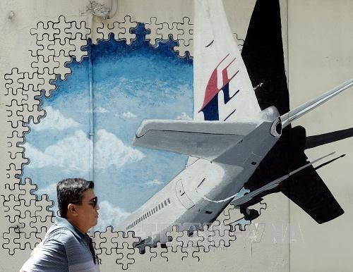 US firm to receive up to 70 mln USD if finding missing MH370 hinh anh 1