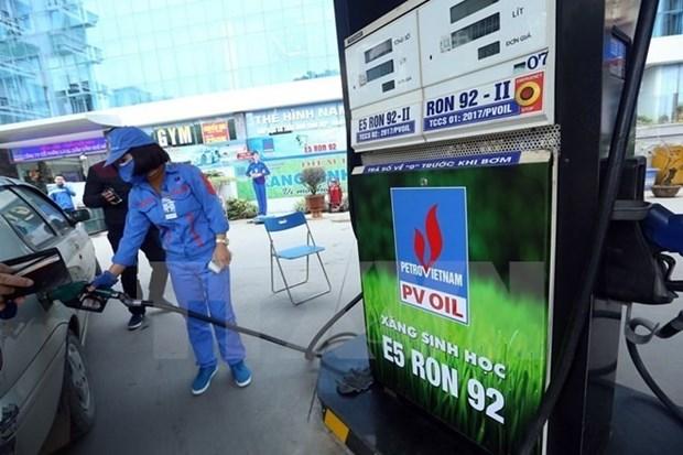 Ministry assures E5 bio-fuel meets international standards hinh anh 1