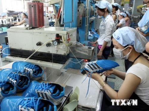 Leather, footwear sector targets 20 bln USD in export earnings hinh anh 1