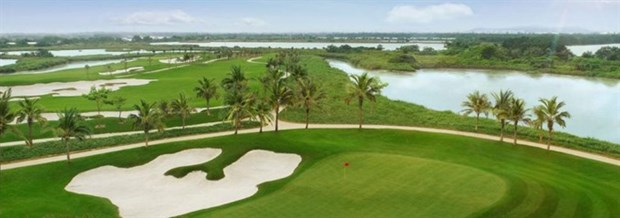 CEOs to tee off at first VCG500 hinh anh 1