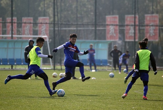 Park to fix Vietnam's problem ahead of Australia clash hinh anh 1