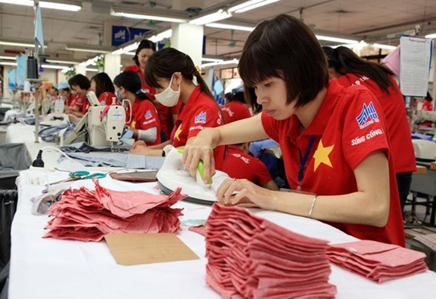 Rosy outlook for Vietnam's garment trade hinh anh 1