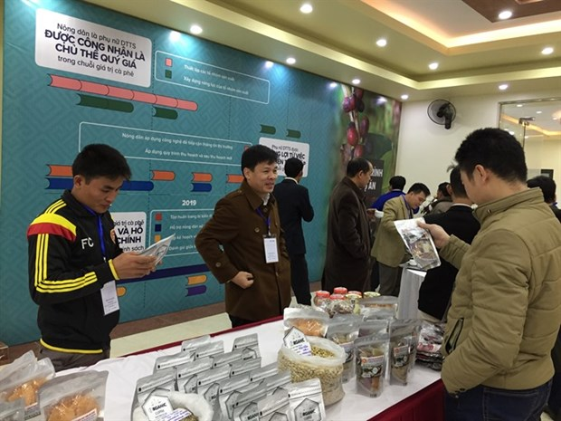 Small-scale coffee farmers get helping hand hinh anh 1