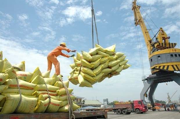 Vietnam's economy is recovering: East Asia Forum hinh anh 1