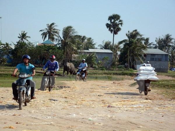 Vietnamese, Cambodian to enjoy easy cross-border travel during Tet hinh anh 1
