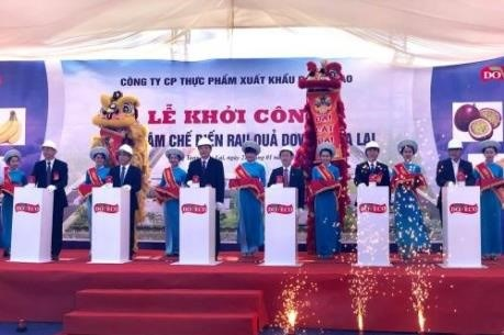 Work starts on fruit processing centre in Gia Lai hinh anh 1