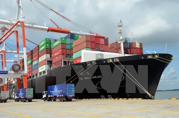 Thi Vai international port begins operation hinh anh 1