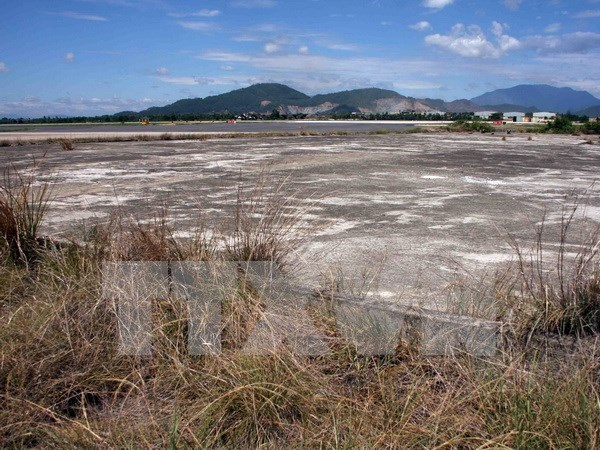 USAID helps with dioxin remediation at Bien Hoa Airport hinh anh 1