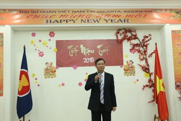 Overseas Vietnamese communities gather to celebrate Tet hinh anh 1