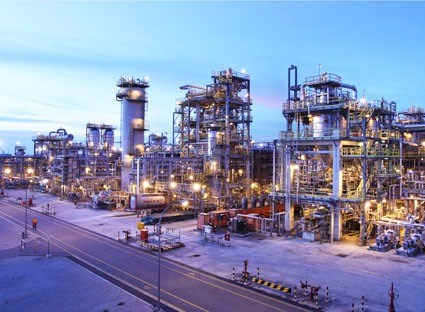 Thai firm keen on 100 percent stake at LSP hinh anh 1