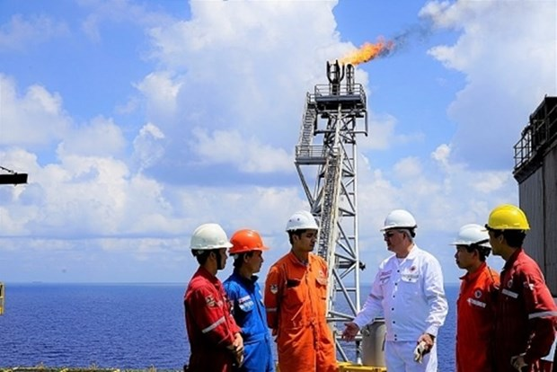 Deputy PM vows to facilitate Vietnam-Russia oil-gas cooperation hinh anh 1