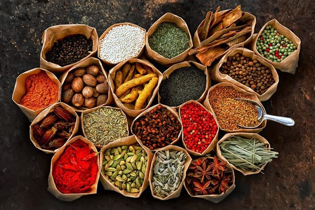 Thai Health Ministry supports local traditional medicine hinh anh 1