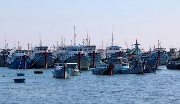 Minister asks for more coordination to curb illegal overseas fishing hinh anh 1