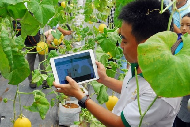 HCM City launches tech development fund hinh anh 1