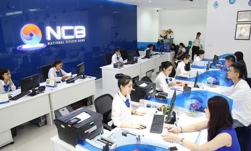 New law set to help weak banks recover: experts hinh anh 1