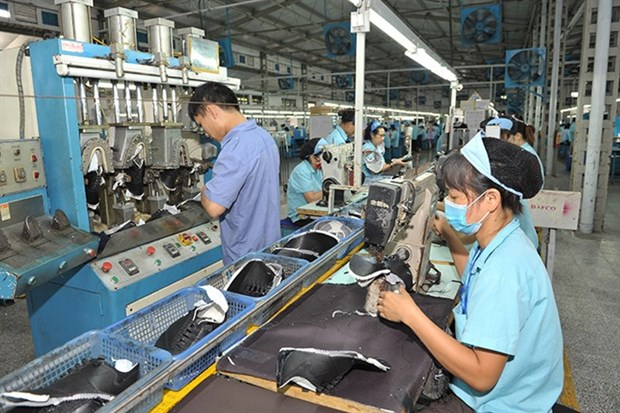 Nearly 11,000 new firms set up in January hinh anh 1