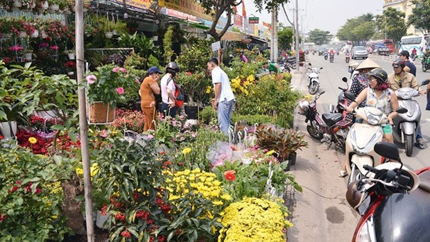 High rentals likely to push up Tet flower prices hinh anh 1