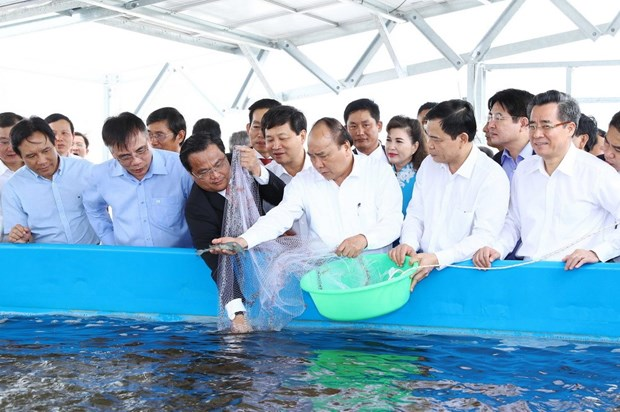 High-tech shrimp farming area constructed in Bac Lieu province hinh anh 1