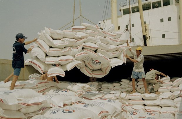 Rice export surges 74.2 percent in January hinh anh 1