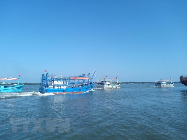 Tien Giang takes urgent solutions to IUU fishing hinh anh 1