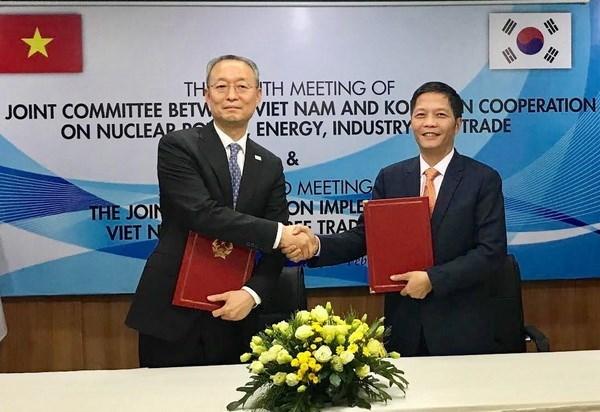 Vietnam, RoK look towards 100-bln-USD trade by 2020 hinh anh 1