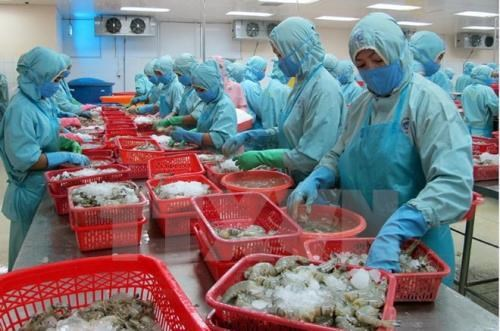 Aquatic export surges in January hinh anh 1
