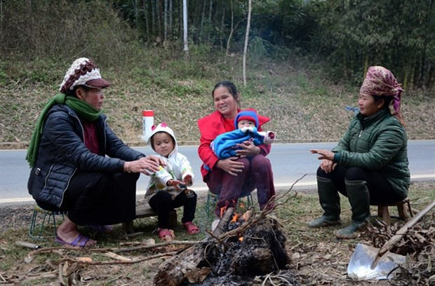 PM calls for preventive measures against cold wave hinh anh 1