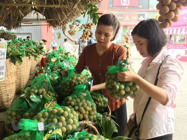 Vietnam may export longans to Australia in 2019 hinh anh 1