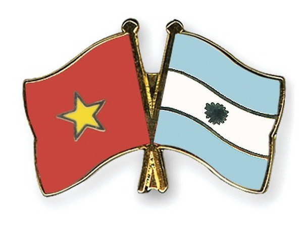 VUFO leader receives Argentine cultural official hinh anh 1