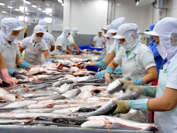 More firms hoped to ship aquatic products to Russia hinh anh 1