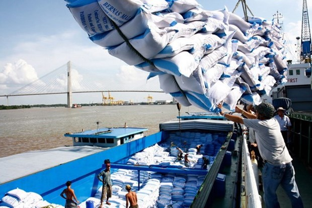 Positive signs promise good year for rice export hinh anh 1