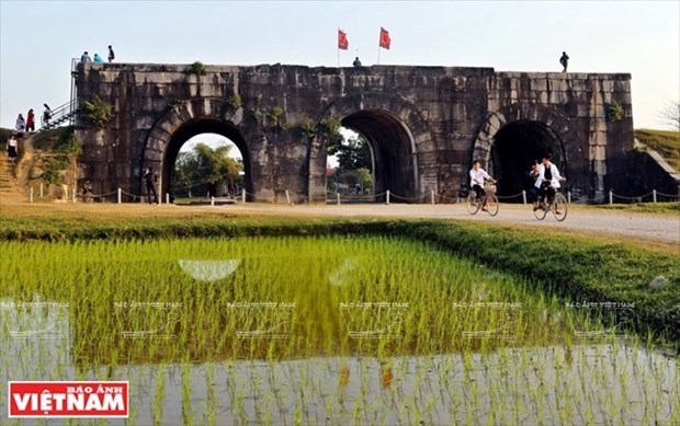 Ho Dynasty Citadel opens for free during Tet hinh anh 1