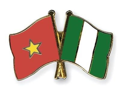 Vietnamese Ambassador to Nigeria presents credentials hinh anh 1