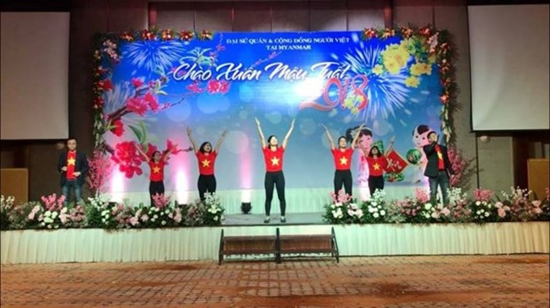 Vietnamese embassies celebrate Lunar New Year hinh anh 1