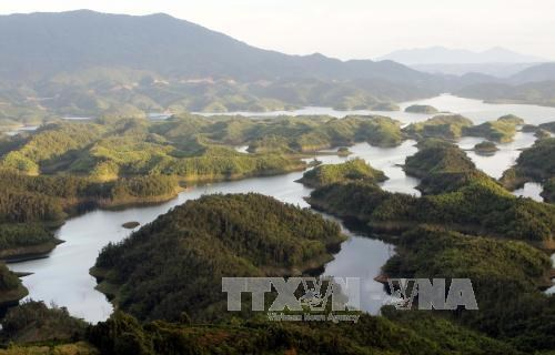 Ta Dung Nature Reserve becomes National Park hinh anh 1
