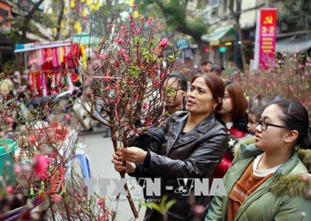 Hanoi bustling in spring days hinh anh 1