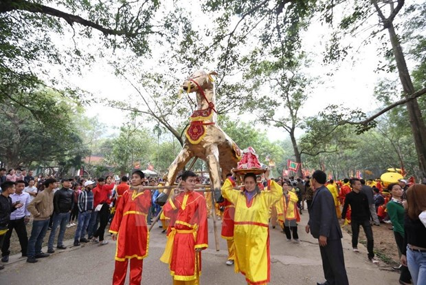 Vietnam's UNESCO-recognised intangible cultural heritages hinh anh 6