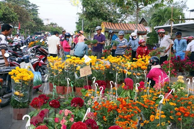 Ornamental plants - indispensable part of Tet hinh anh 1