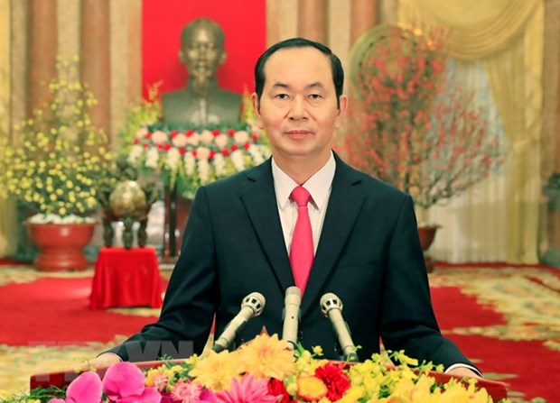 President Tran Dai Quang wishes Vietnamese a prosperous New Year hinh anh 1