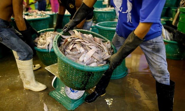 Thai gov't ramps up crusade against illegal fishing, human trafficking hinh anh 1