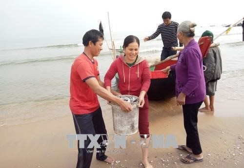 Bumper catches make Tet doubly sweet for fishermen hinh anh 1
