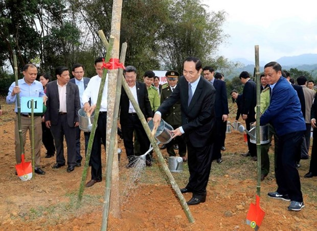 President launches New Year tree planting festival hinh anh 1