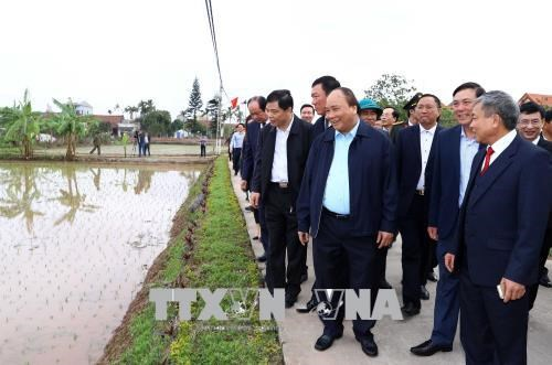 Prime Minister visits farmers in Nam Dinh hinh anh 1